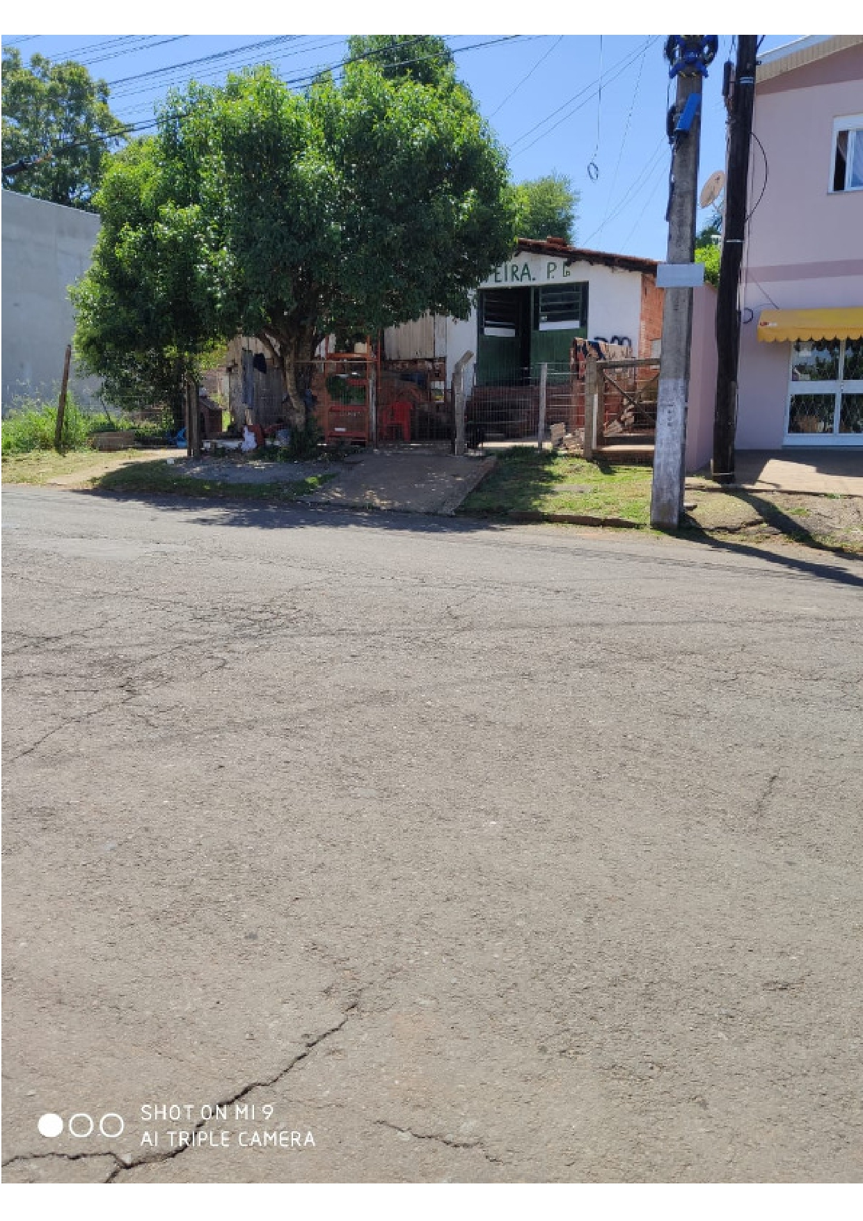 LOTE 2131